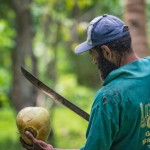 Opening a Coconut with Bush Knife
