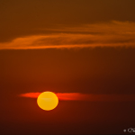 CBPP_20141210_Ixtapa-149-M