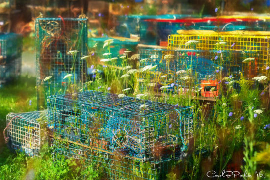 Lobster Pots and Wildflowers - Rockland, Maine 2016